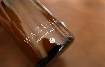 Akyrise_WAZUKA 01