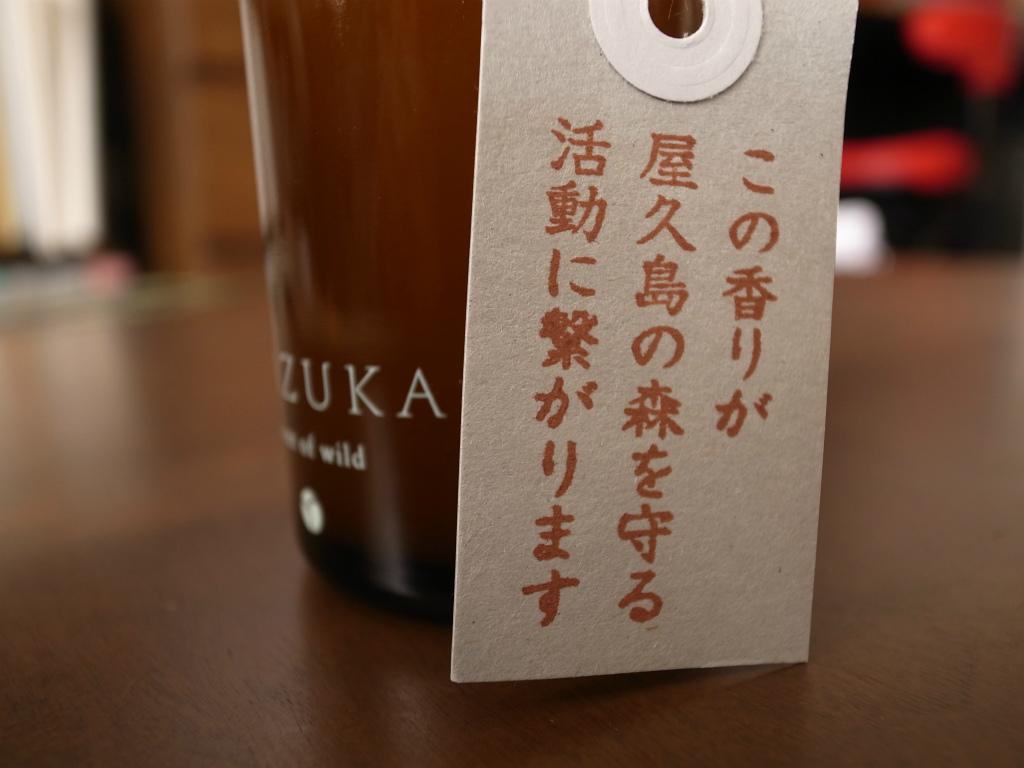 Akyrise_WAZUKA 02