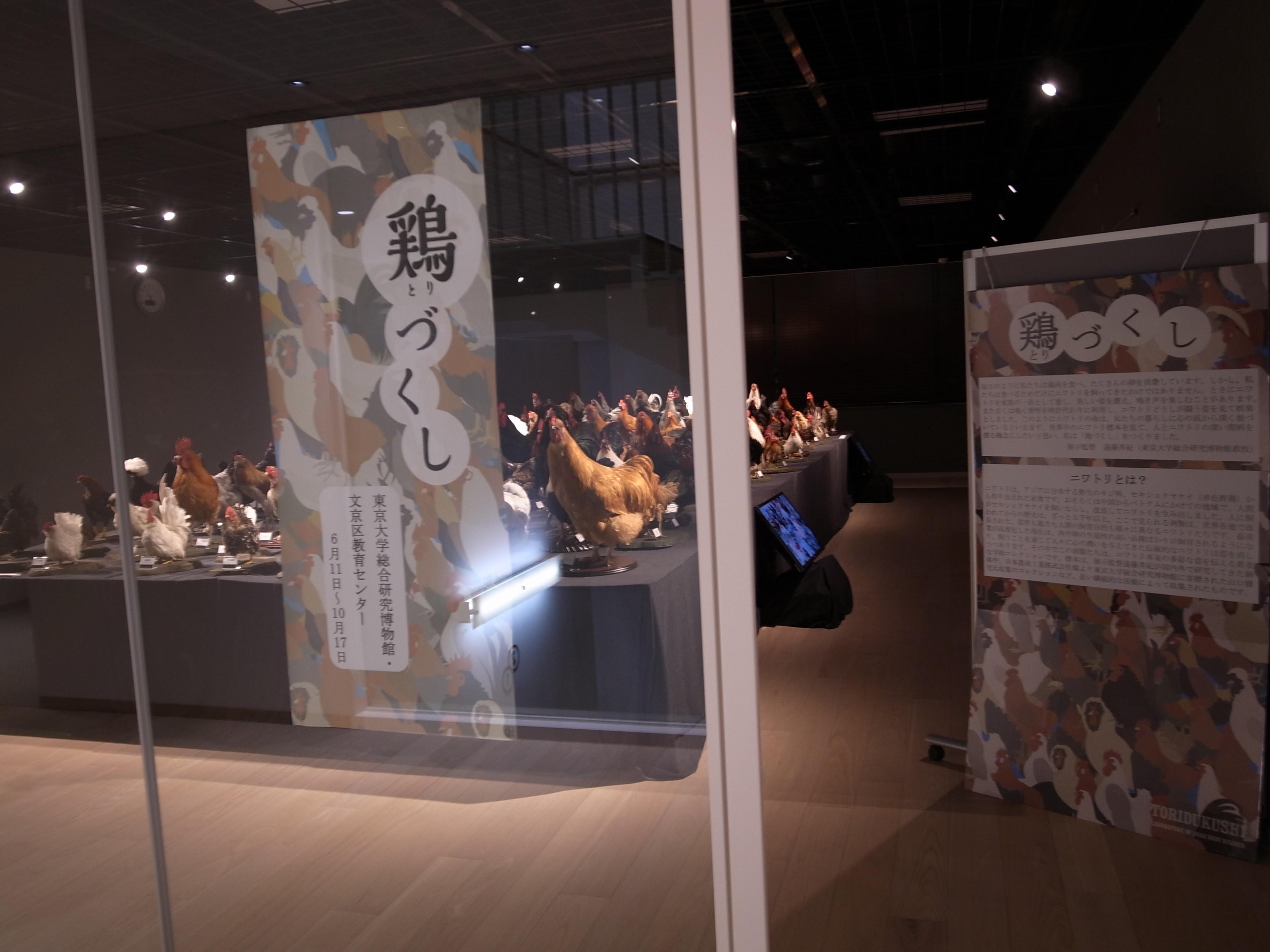 Event_Tori_zukushi 01
